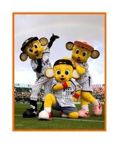 阪神タイガースファン感謝デー2015