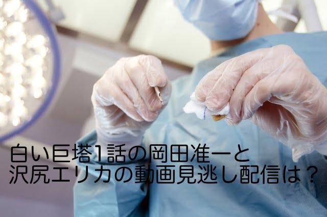 白い巨塔 岡田准一 沢尻エリカ 動画