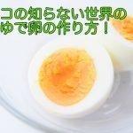 マツコの知らない世界小林真作のゆで卵の作り方は?料理レシピもチェック!