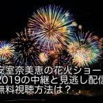 安室奈美恵の花火ショー2019の中継と見逃し配信無料視聴方法は?