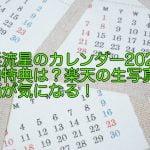 横浜流星のカレンダー2020の予約特典は?楽天の生写真の絵柄が気になる!