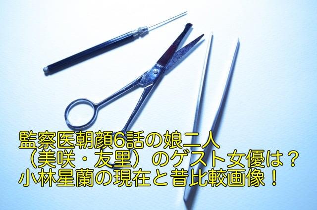 監察医朝顔 6話 ゲスト