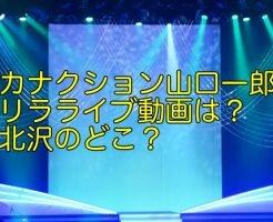 サカナクション 山口一郎 ゲリラライブ 動画