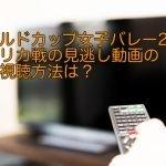 ワールドカップ女子バレー2019アメリカ戦の見逃し動画の無料視聴方法は?