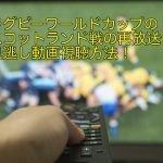 ラグビーワールドカップのスコットランド戦の再放送や見逃し動画視聴方法!