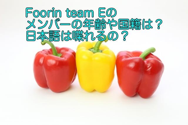 foorin team E メンバー
