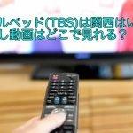 ダブルベッド(TBS)は関西はいつ?見逃し動画はどこで見れる?