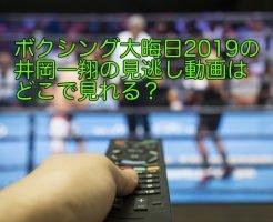 ボクシング 大晦日 2019 動画