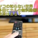 マツコの知らない世界宇多田ヒカルの無料動画は?再放送はある?