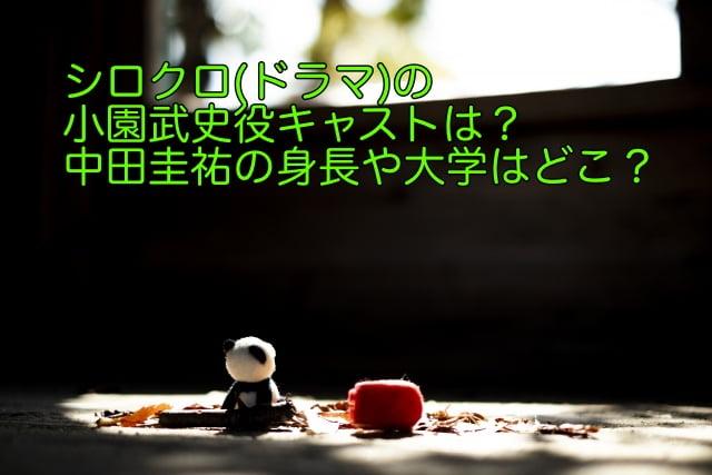 シロクロ ドラマ キャスト