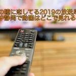 ブスの瞳に恋してる2019の放送局は?関西や静岡で動画はどこで見れる?