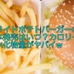 フライドポテトバーガーの日本発売はいつ?カロリーと炭水化物量がヤバイw