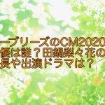 シーブリーズのCM2020の女優は誰?田鍋梨々花の身長や出演ドラマは?
