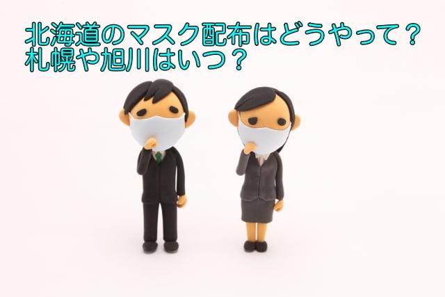 マスク配布 北海道 どうやって