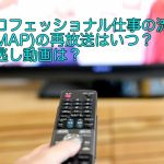 プロフェッショナル仕事の流儀(SMAP)の再放送はいつ?見逃し動画は?
