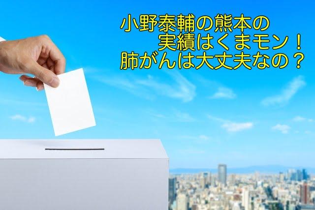 小野泰輔 熊本 実績