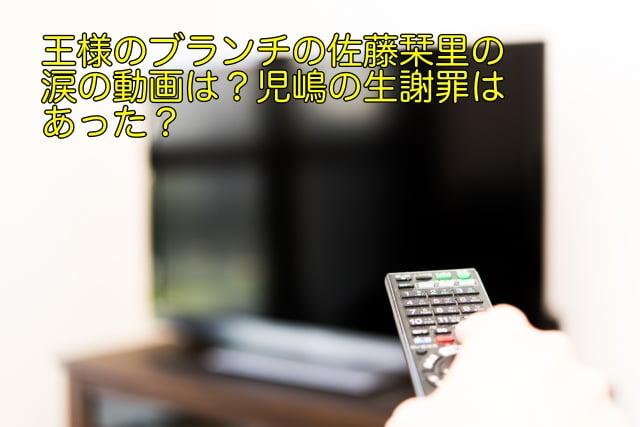 王様のブランチ 佐藤栞里 動画